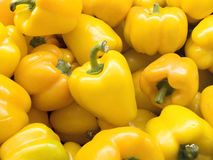 Yellow bell pepper or sweet pepper. The fresh group of yellow bell pepper or sweet pepper, Jon& x27;s Head, pepper and capsicum & x28;capsicum annuum l.& x29 royalty free stock photography
