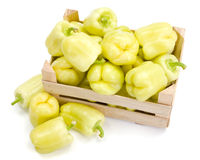Yellow bell peppers (Capsicum annuum) Stock Photos