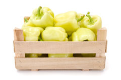 Yellow bell peppers (Capsicum annuum) Royalty Free Stock Photo