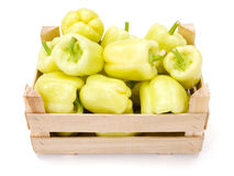 Yellow bell peppers (Capsicum annuum) Stock Image