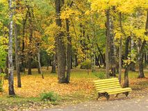 Yellow bench in the autumn Park. Royalty Free Stock Photos