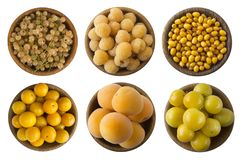 Yellow berries and fruits isolated on white background. Collage of different yellow berries and fruits. Yellow currants, yellow ra stock photography