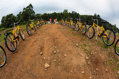 Yellow Bicycle Entrance  Stock Photo