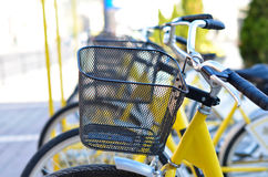 Yellow bicycles Royalty Free Stock Images