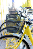 Yellow bicycles Royalty Free Stock Image