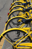 Yellow bicycles in the bicycle rack of the urban bike-sharing sy. Yellow f bicycles in the bicycle rack of the urban bike-sharing system to move into city Royalty Free Stock Image
