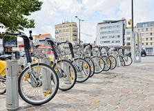Yellow bicycles in Brussels Royalty Free Stock Images