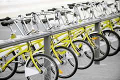 Yellow bicycles for public transport Royalty Free Stock Image