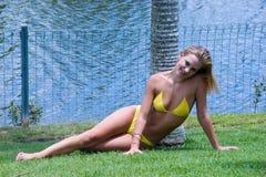 Yellow bikini. A female wearing yellow bikini standing against a palm tree royalty free stock photos