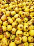 Yellow bio apples Royalty Free Stock Photography
