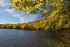 Yellow birch leaves frame Russell Pond in autumn, New Hampshire. Royalty Free Stock Photography