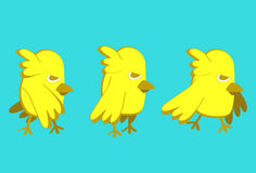 Yellow bird Stock Photo
