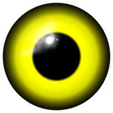Yellow bird or alien eye isolated on the white background Royalty Free Stock Image