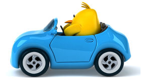 Yellow bird in a car Stock Images