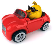 Yellow bird in a car Royalty Free Stock Image