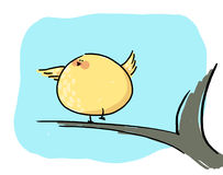 Yellow bird cartoon illustration Stock Image