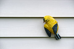 Yellow Bird Carving on Wall Stock Image