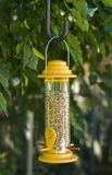Yellow Bird Feeder Royalty Free Stock Photography