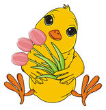 Yellow bird hold a tulips Royalty Free Stock Photos
