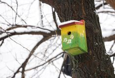 Yellow bird house on the tree. Yellow bird house outdoors in winter covered with snow, in the park royalty free stock photos