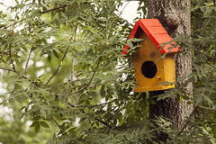 Yellow bird house on tree Stock Image