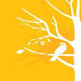 Yellow bird on tree Royalty Free Stock Images