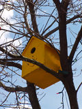 Yellow Birdhouse. Cheerful birdhouse perched in a tree Stock Photography