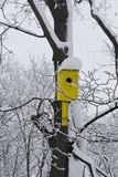 Yellow birdhouse. Bright yellow birdhouse hanging on tree in winter Park royalty free stock photos