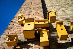 Yellow birdhouses on the wall in spring stock images