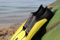 Yellow and black colored flipper over the sands Royalty Free Stock Images