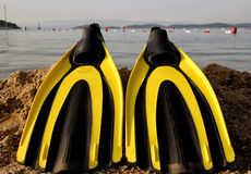 Yellow and black colored flipper over the sands Royalty Free Stock Image