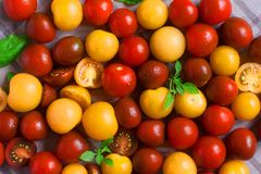 Yellow black kumato and red cherry tomatoes on the table royalty free stock images