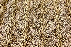 Leopard Spots Pattern. Yellow and Black Leopard Skin Pattern royalty free stock photography