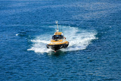 Yellow and Black Pilot Boat Cutting Through Blue Water stock photography