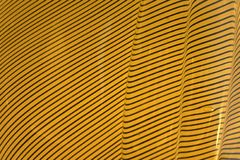 Yellow and black wavy textures Stock Image