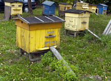 Yellow and blue bee hives. Stock Images