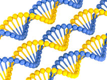 Yellow blue DNA molecule Royalty Free Stock Image
