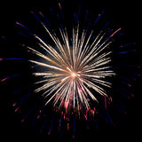 Yellow-blue firework Stock Images