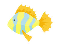 Yellow-blue Fish. A Vector Image of an yellow Fish with blue Stripes Royalty Free Stock Image