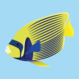Yellow And Blue Fish Isolated On Blue Background. Vector Yellow And Blue Fish Isolated On Blue Background Royalty Free Stock Photo