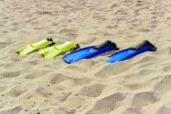Yellow and blue flippers for diving lie on the sand in a row.  royalty free stock photography
