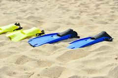 Yellow and blue flippers for diving lie on the sand in a row.  royalty free stock photo