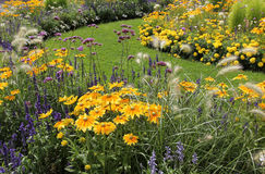 Yellow and blue flowerbed in the park Royalty Free Stock Photo