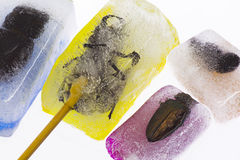 Yellow ,blue, pink, and orange beetle and bumblebee ice creams Royalty Free Stock Photography