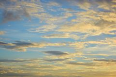 Yellow blue sky Stock Photography