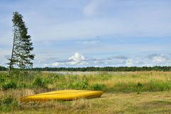 Yellow boat on shore of marshy lake Royalty Free Stock Images