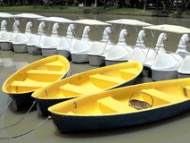 YELLOW BOATS AND WHITE DUCKS BOATS. Royalty Free Stock Images