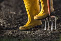 Yellow boots Royalty Free Stock Photography