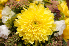 Yellow bouquet Royalty Free Stock Images