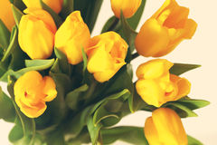 Yellow bouquet of tulips flowers Stock Images